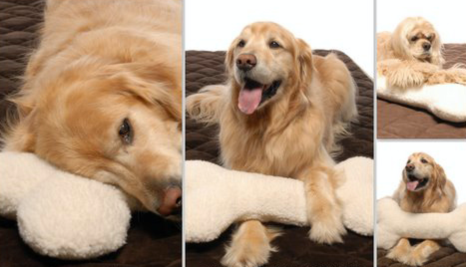 Ultra Plush Bone Extra Large Pillow Dog Toy (Personalize)