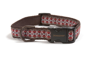 Red Mountain Majesty Pendleton Designer Native Indigenous Inspired Dog Collar & Leash Set