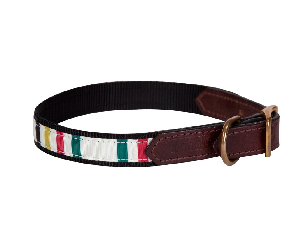 Glacier National Park Inspired Multi-Color Stripes Pendleton Designer Luxury Grosgrain Ribbon Nylon Dog Collar & Leash Set