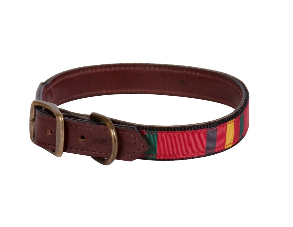 Mt. Rainier Pendleton Collar & Leash Set