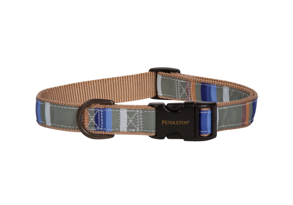 Pendleton Designer Rocky Mountain National Park Green Designer Durable Dog Collar