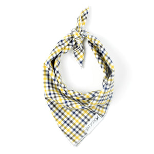 Multi-Color Plaid Bandana