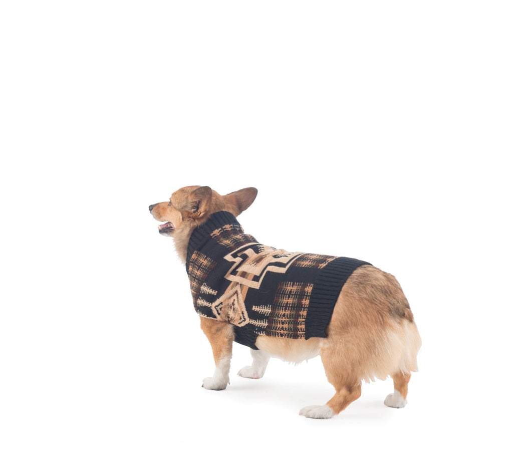 Pendleton Harding Native Dog Sweater