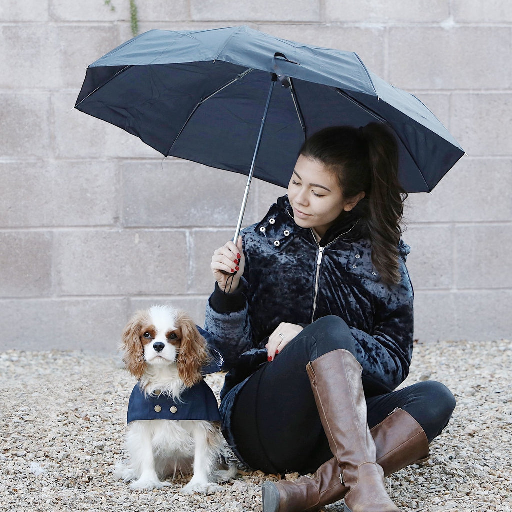 Allen Barkholic Designer Waterproof Winter RainCoat TrenchCoat Dog Jacket