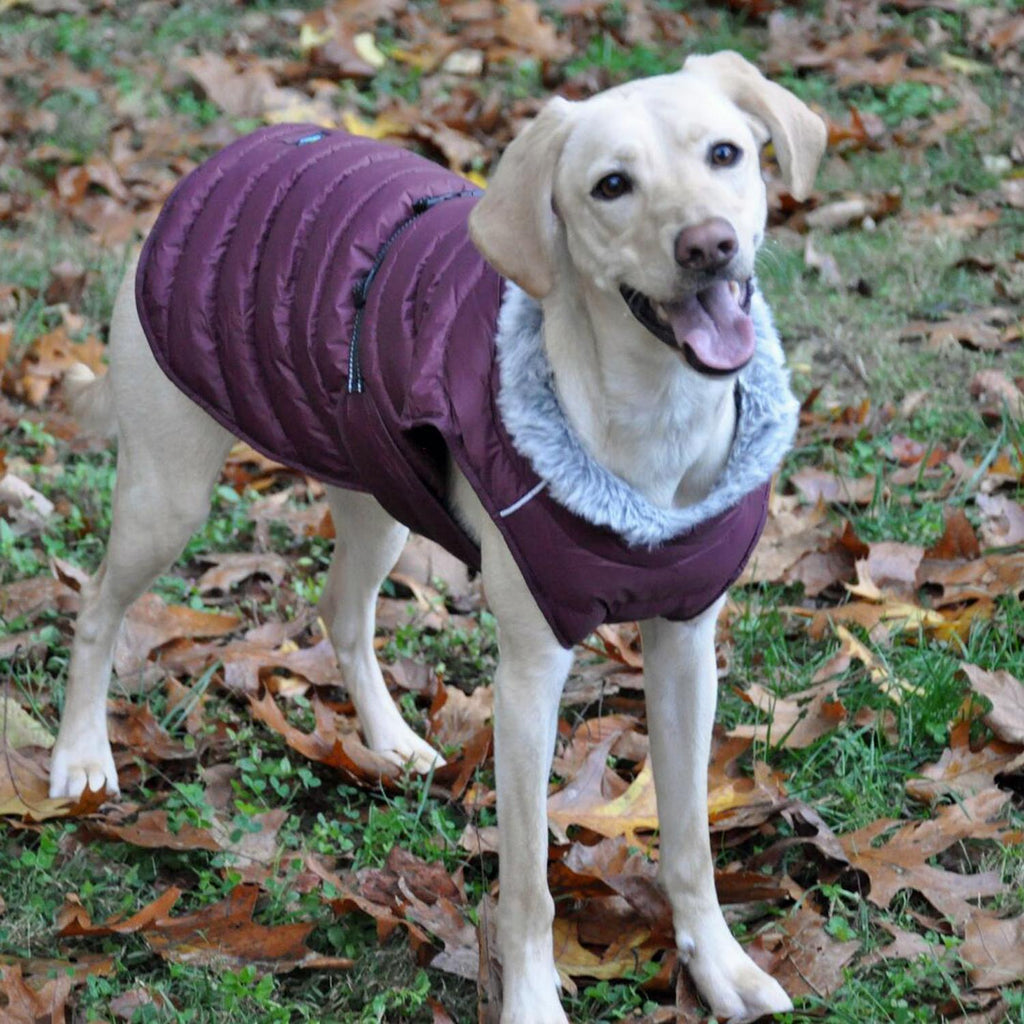 Alpine Extreme Weather Puffer Dog Coat - Burgundy