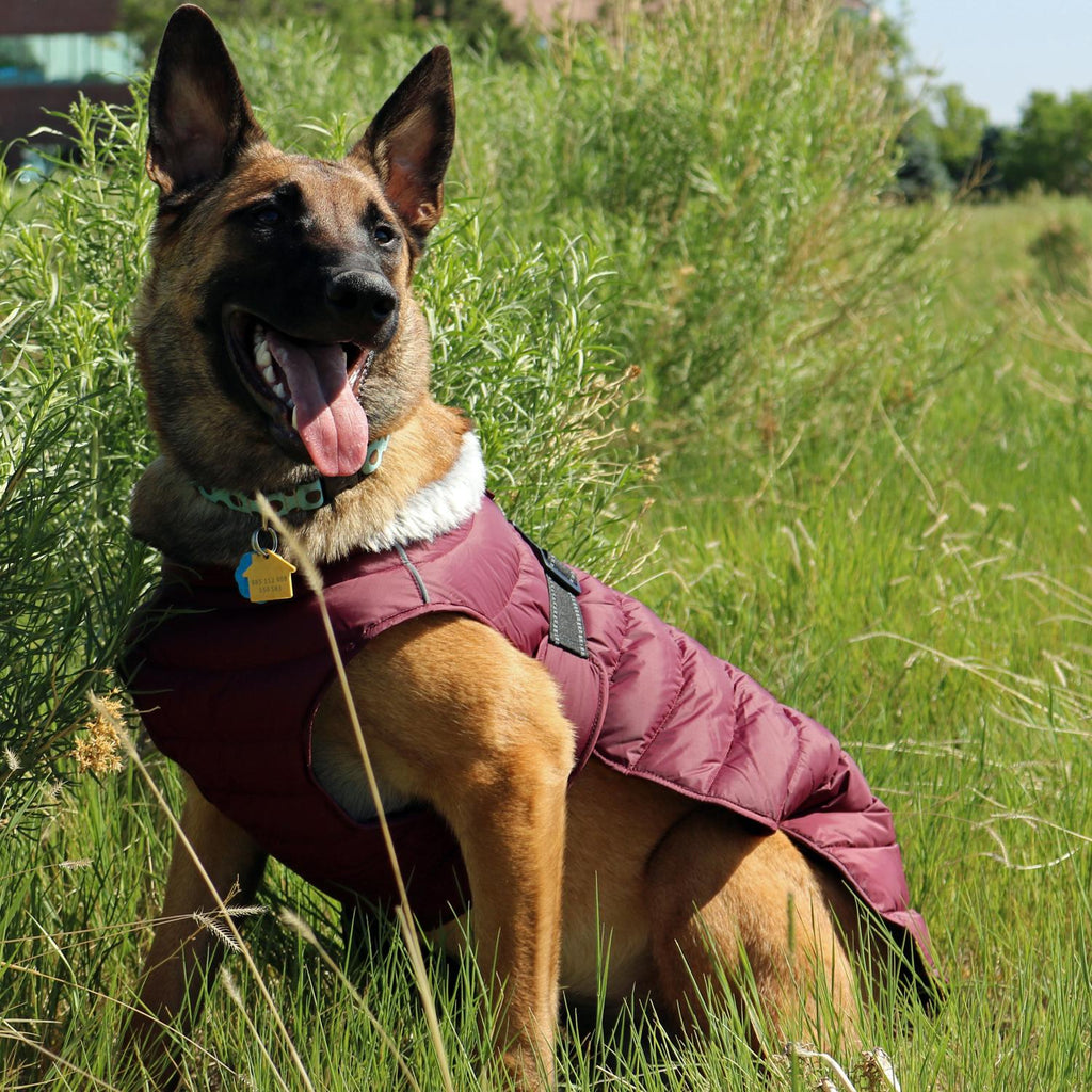 Alpine Extreme Weather Waterproof Fleece Fiber-Insulated Puffer Warm Dog Coat Jacket - Burgundy