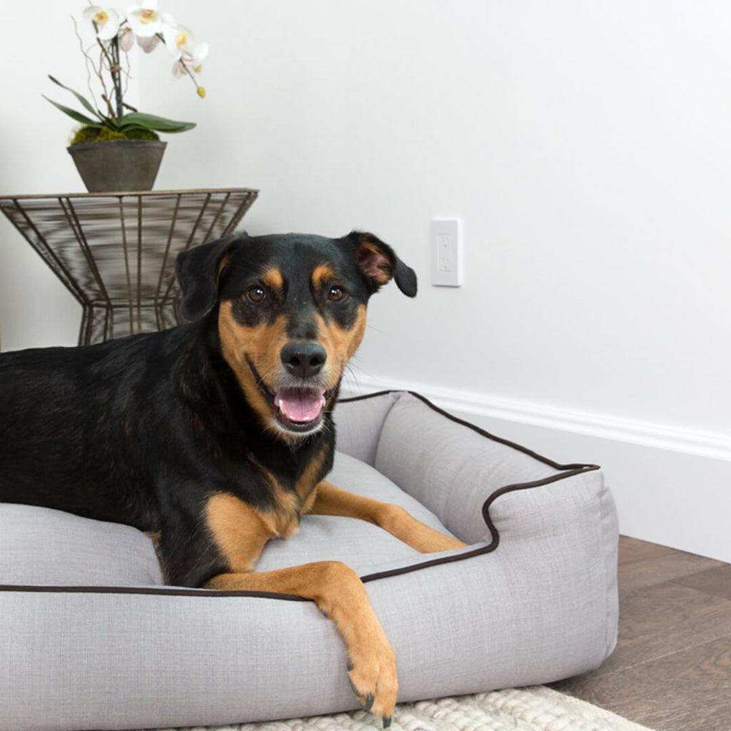 Callen Earl Grey Lounge Luxury Dog Bed