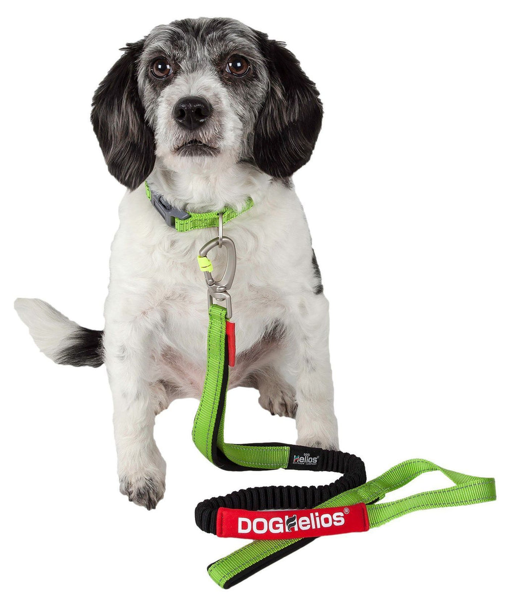 Dog Helios Neo-Indestructible Thick Durable Sporty Embroidered Sporty Dog Collar & Leash Set