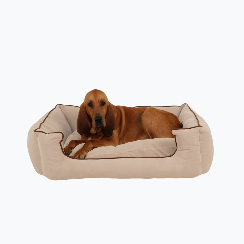 Microfiber Low Profile Kuddle Lounge Dog Bed (Personalize)