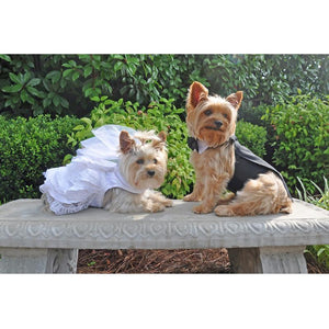 Dog Wedding Gown Dress Harness & Veil Set
