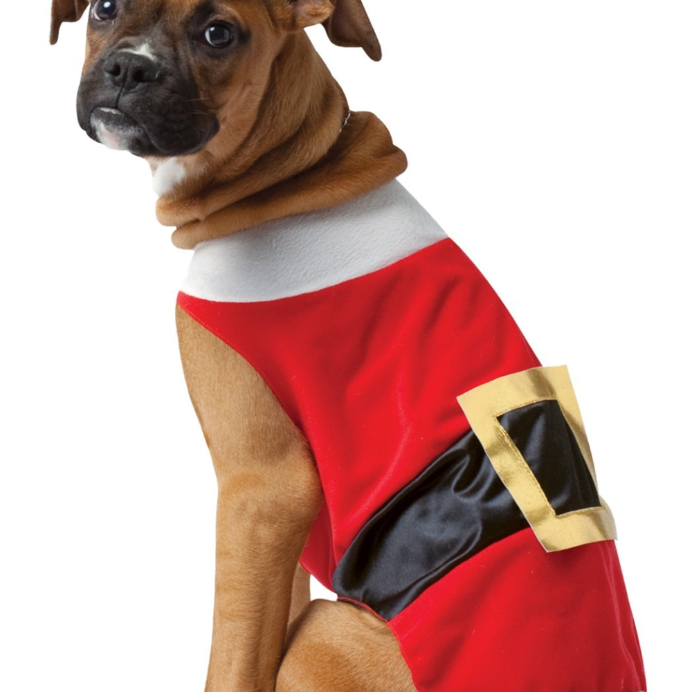 Pet Costume Santa Large