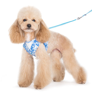 EasyGo Dog Harness with Leash