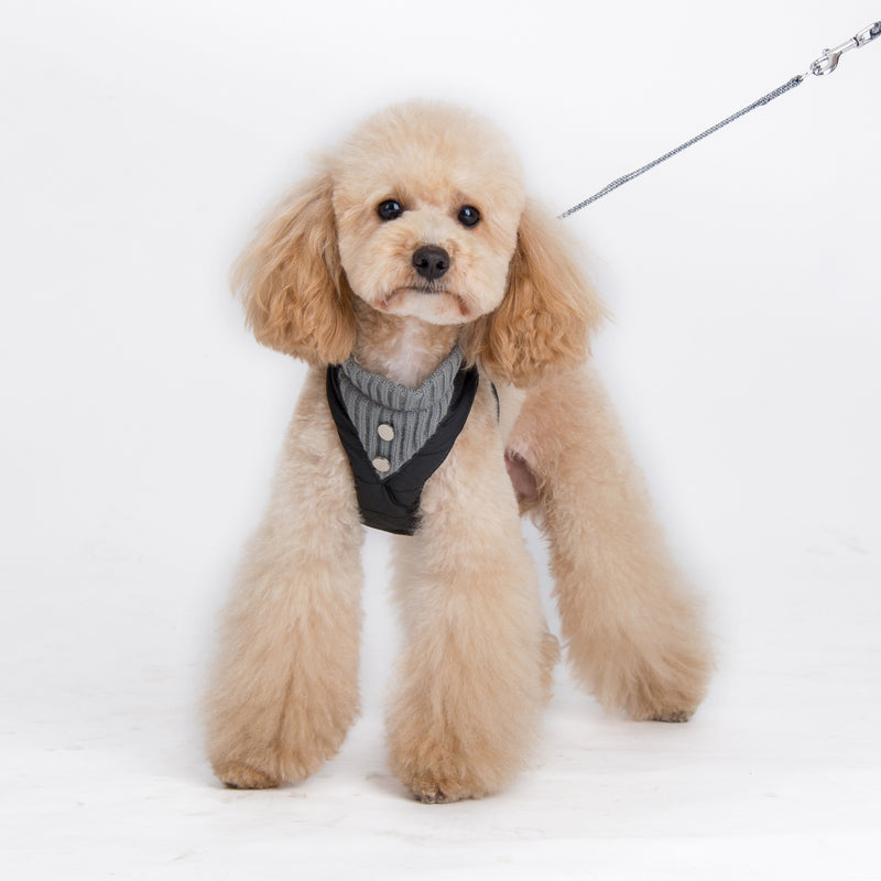 Puffer Designer Dog Harness