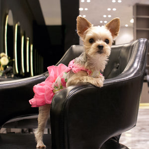 Floral Flounce Pink Designer Dog Dress