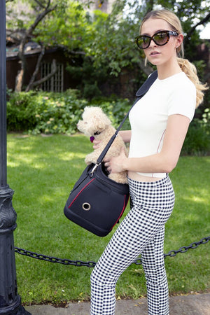 Katziela Designer Red Furry Ferry Expandable TSA Airline Approved For Small Pet Cats & Dogs Carrier Bag