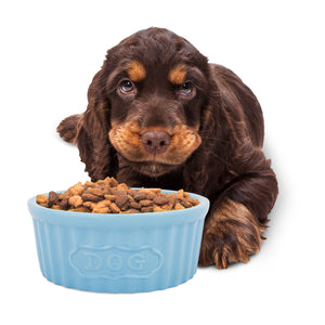 Harry Barker Blue Ramekin-Style Glazed Ceramic Azo-Free Dye Dog Food Feeder Bowl