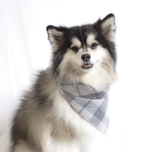 Angelo Grey Plaid Barkholic Designer Luxury Ultra-Soft 100% Organic Cotton Dog Bandana