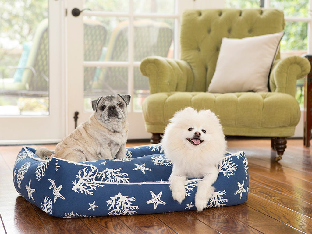 Cove Navy Lounge Luxury Hypo-Allergenic Dog Bed