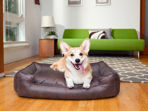 Carbon Lounge Luxury Hypo-Allergenic Dog Bed
