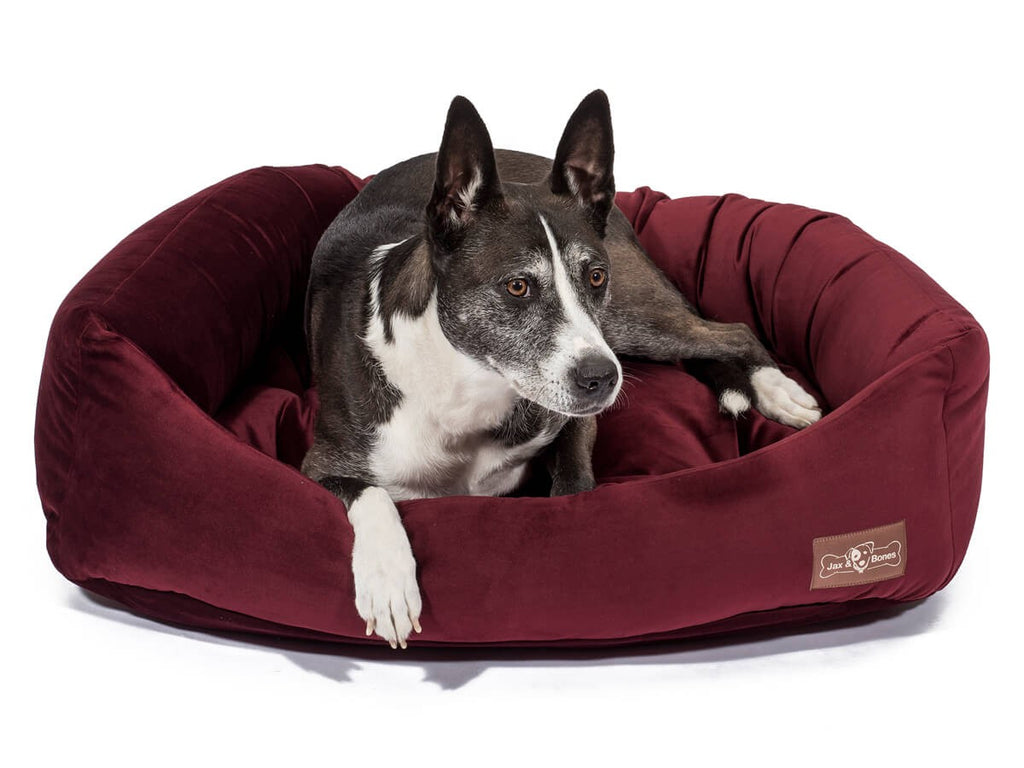 Vintage Maroon Hypo-Allergenic Bolster Napper Joint Support Dog Bed