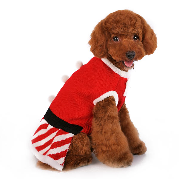 Mrs. Santa Claus Christmas Holiday Designer Lady Dog Sweater Dress