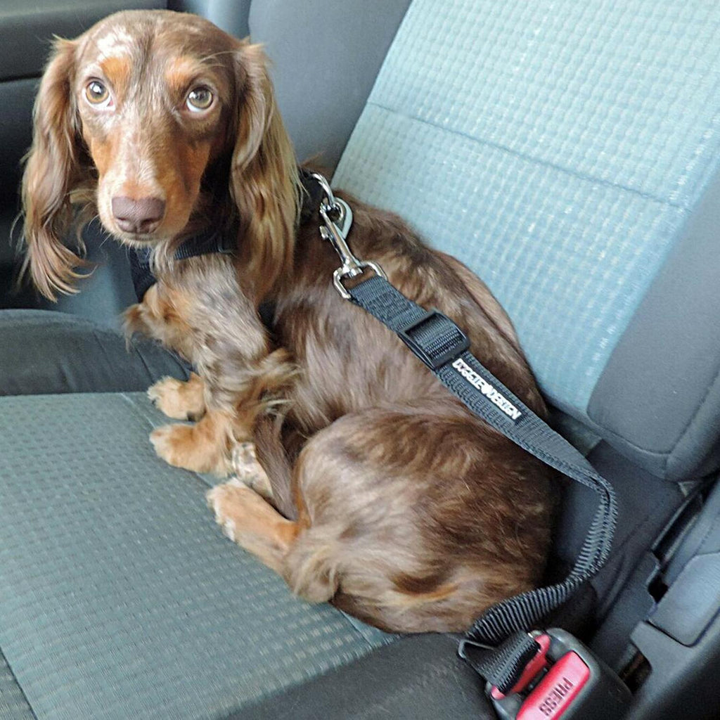 Seatbelt Strap Dog Car Leash