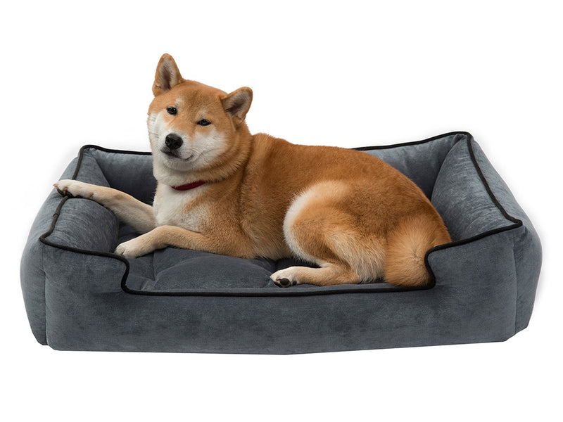 Steel Luxury Hypo-Allergenic Joint Support Sleeper Dog Bed
