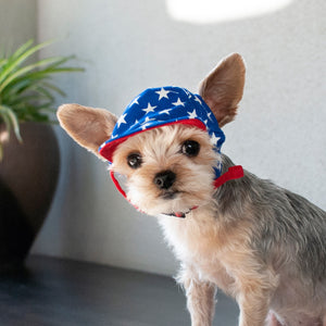 American Flag Star Patriotic Pet Dog & Cat Visor Hat