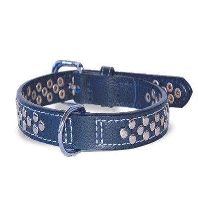 Blue Leather Silver Nickel Plated Studded Premium Durable Quality Dog Collar