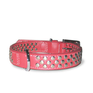 Nickel Plated Leather Rose Studded Dog Collar