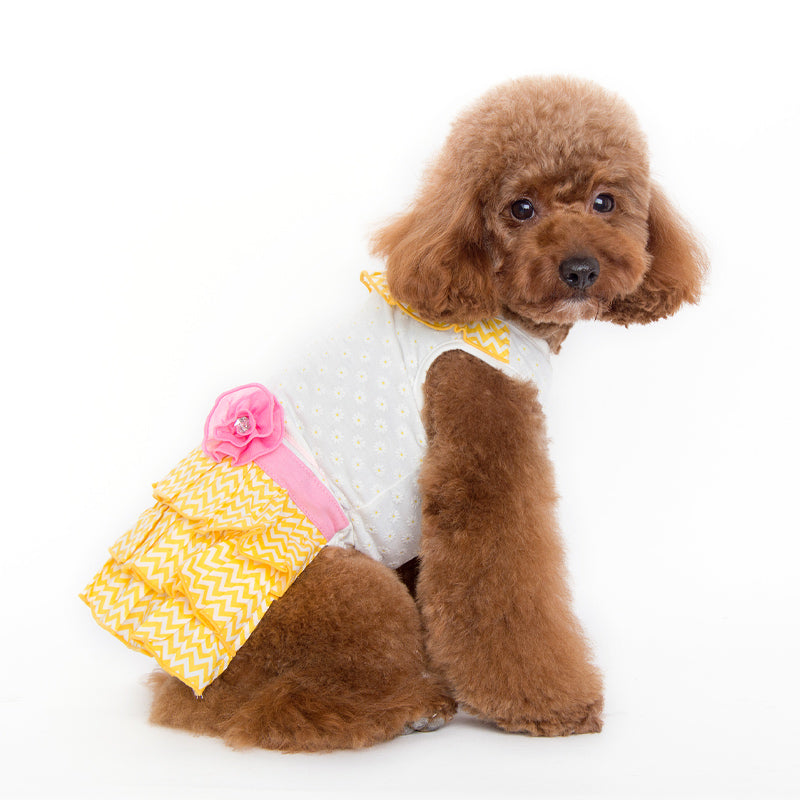 Sunshine Chevron Yellow Designer Dog Dress