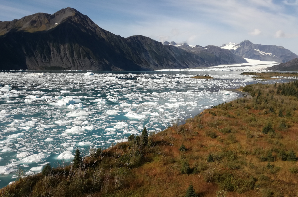 bear glacier alaska, travel tips, campervan, vanlife, tamed winds blog, tamedwinds