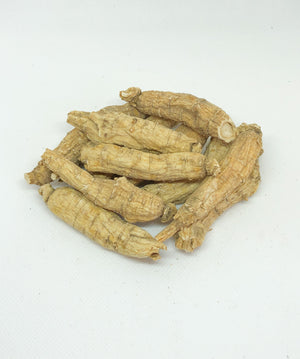 Graded Short Large Wisconsin Grown American Ginseng By The Pound