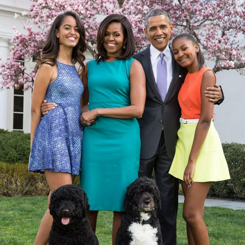 The Obamas and their Portuguese Water Dogs