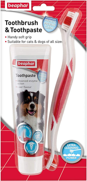 Toothbrush and Toothpaste - Beaphar