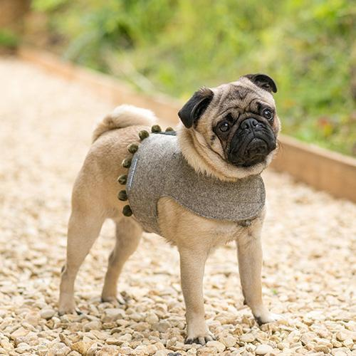 Grey Tweed Soft Dog Harness with Pom Poms - Mutts & Hounds