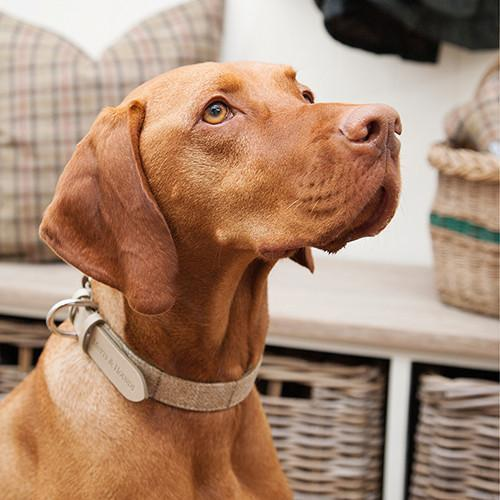Oatmeal Check Tweed & Leather Dog Collar - Mutts & Hounds