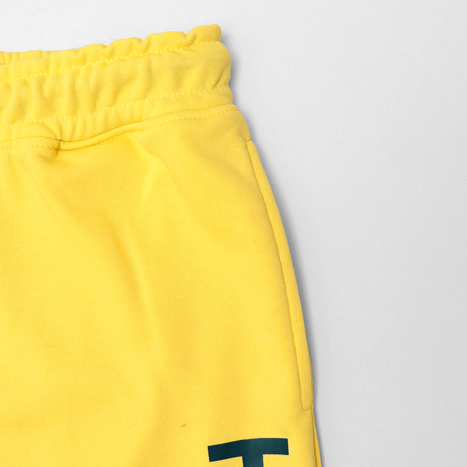 HLSTR SIGNATURE GRAPHIC PRINTED TERRY SWEATPANTS (HO-11045)