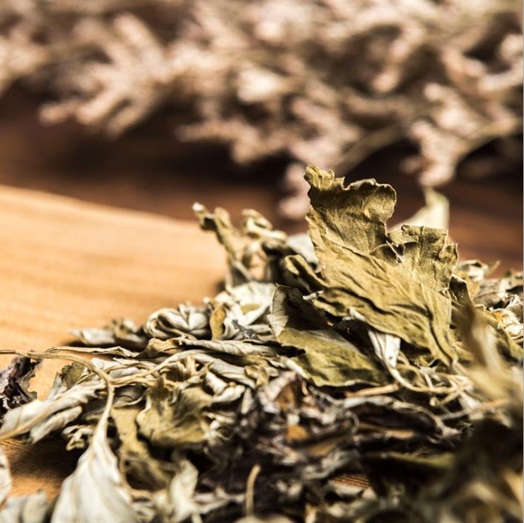 Dried Organic Wormwood
