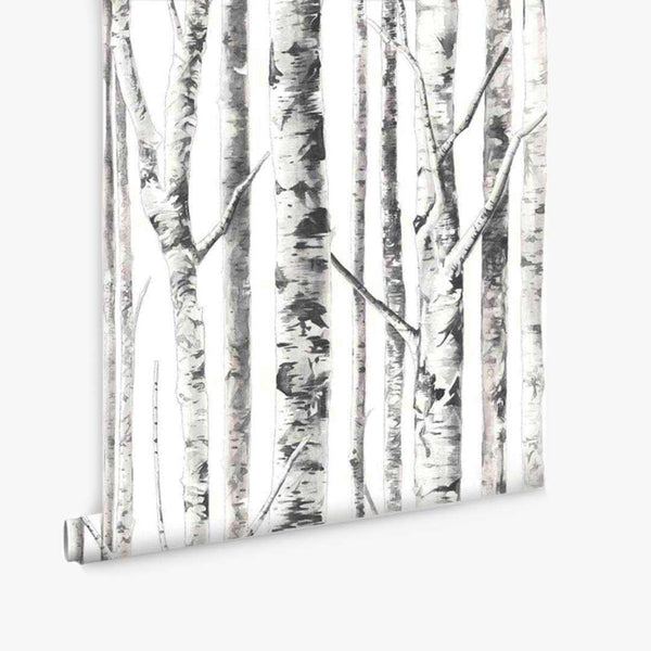 Birch Trees Wallpaper - White - CLM Home