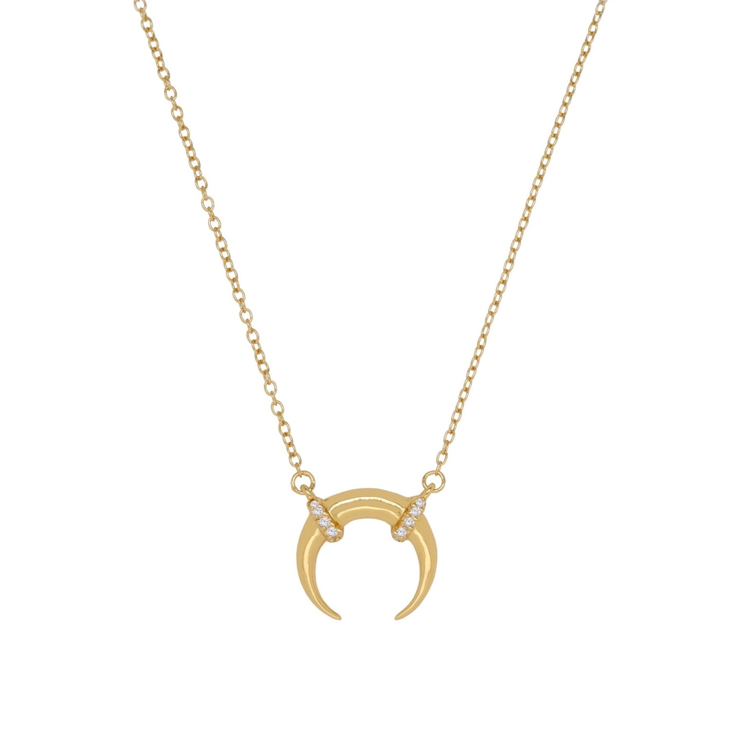Luxe Horn Necklace