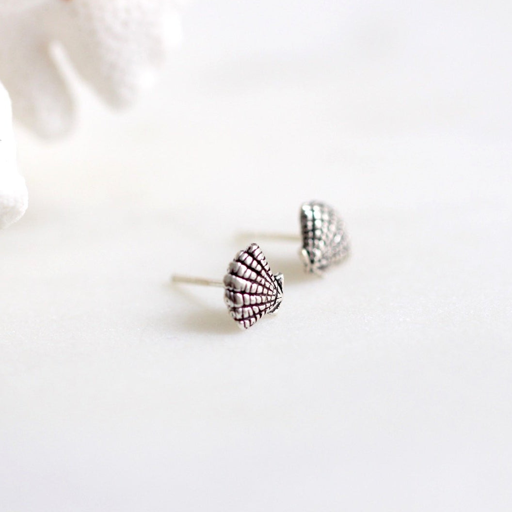 Clam Seashell Stud Earrings