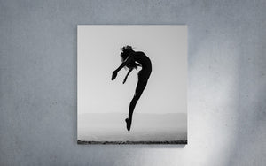 Jump fine art print collection
