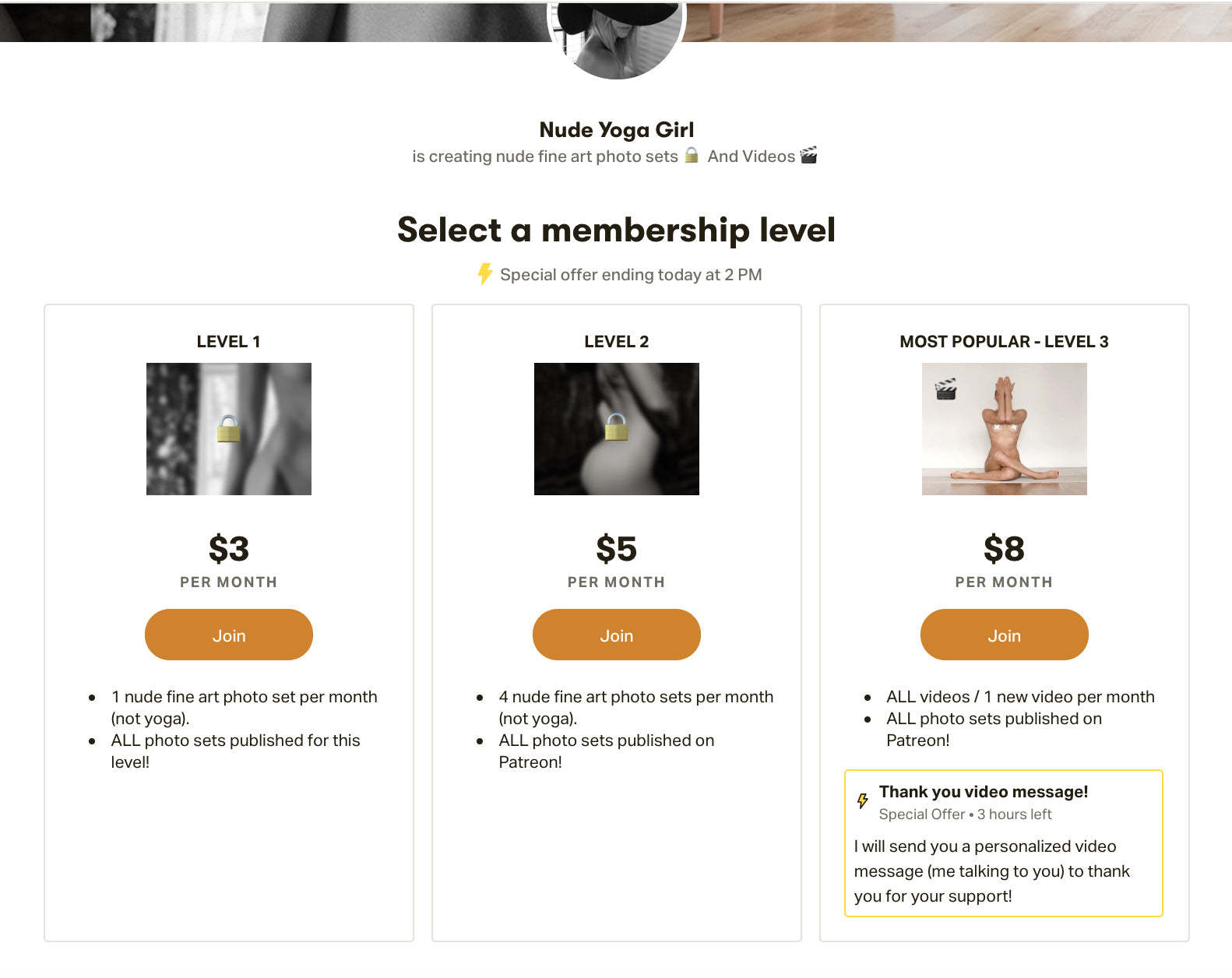 Patreon subscription levels