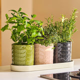 Orla Kiely-60's Stem Ceramic Herb Pots on Tray | Eve & Ranshaw