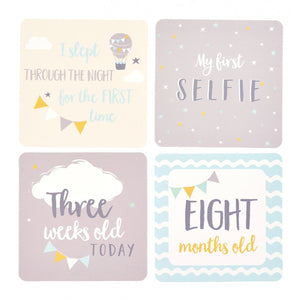 Busy B-Milestone Cards Blue | Eve & Ranshaw