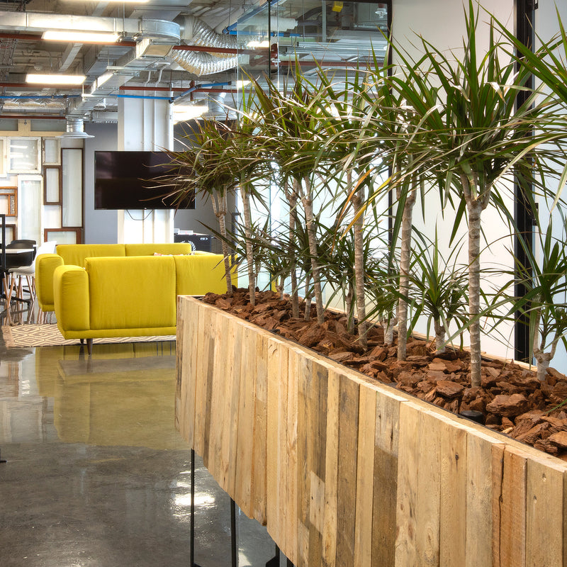 Plantr planter design custom reclaimed wood timber Juwi office