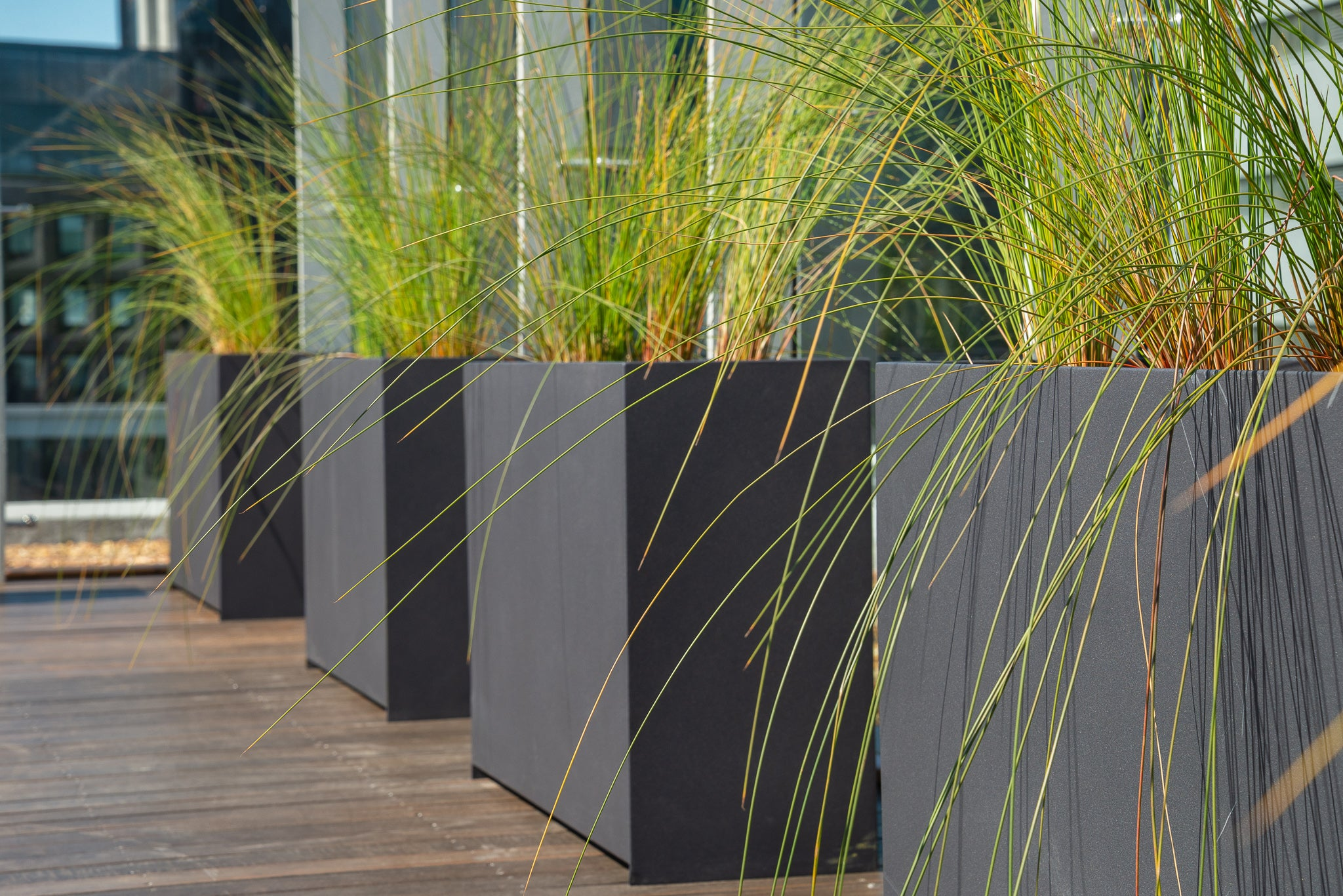 Plantr CTICC installation Cape Town - Loft Planter Steel Custom Landscaping