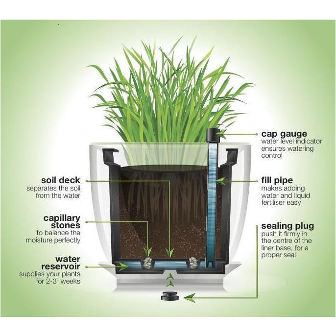 Plantr | Self Watering Liner | Planters | Office Pot Plant | Corporate | Maintenance