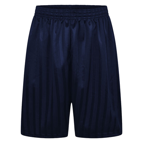 Navy Blue Shadow Stripe P.E. Shorts
